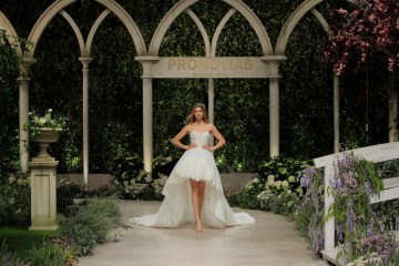 Pronovias 2019 In Bloom Wedding Dress Collection | Conny 2