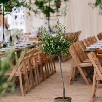 Rustic English Countryside Marquee Wedding | Babb Photo 22