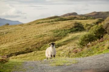 Wild & Adventurous Isle of Skye Elopement   Your Adventure Wedding 3
