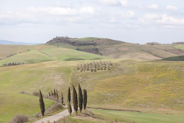 Rustic and Romatic Italian Wedding Inspiration From Tuscany – Tiziana Gallo 2