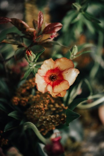 Luxe Mansion Wedding Inspiration Featuring Masculine Florals and Deep Tones – Alex Tenser – Swoon Soiree 14