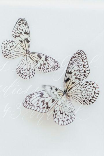 Pretty Butterfly Inspired Wedding Ideas – Anja Schneemann Photography 37