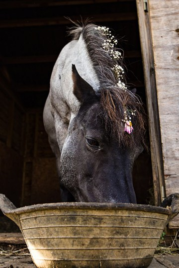 Charming English Wildflower Wedding At The Family Farm – Jonny Barratt Wedding Photography 40