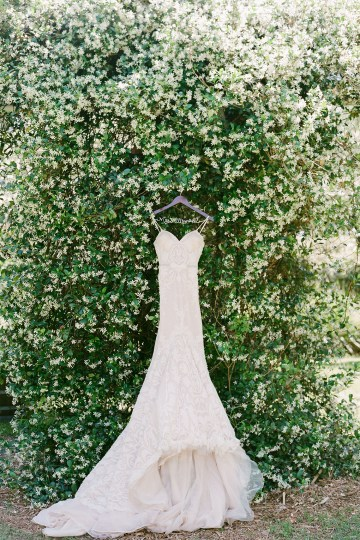 Elegant Blush Southern Plantation Wedding – Molliner Photography 1