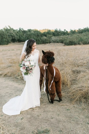 Golden Hour Southern California Wedding with Cambodian Influence – Carrie McGuire Photography 45
