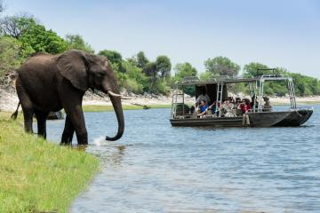 Zambezi Queen in Botswana and Namibia – The Best Wedding Destinations and Venues in Africa – Exalt Africa – Love From Mwai – Bridal Musings 4