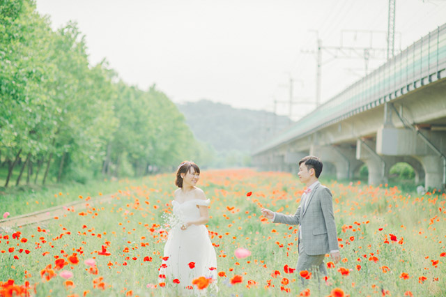Ti-Lifestyle-HongKong-Prewedding-Engagement-Korea-004