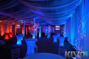Vinter bryllupstema med blålig belysning