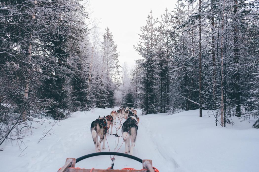 winter honeymoon
