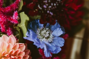 A Multicoloured Wedding at Danby Castle (c) Benni Carol Photography (4)