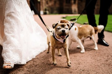 A Glamorous Wedding at Peckforton Castle (c) Madison Picture (51)
