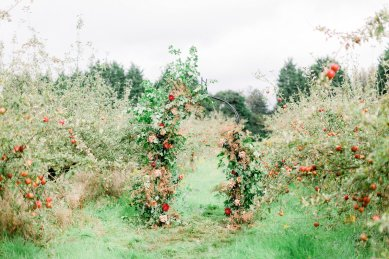 An Orchard Styled Shoot (c) Jo Bradbury (14)