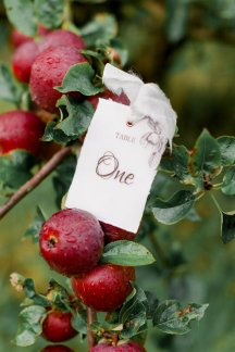 An Orchard Styled Shoot (c) Jo Bradbury (7)