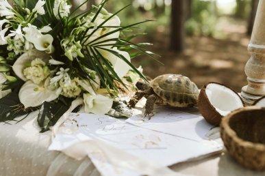 A Safari Inspired Wedding Shoot at Bunny Hill (c) Kayleigh Ann Photography (10)
