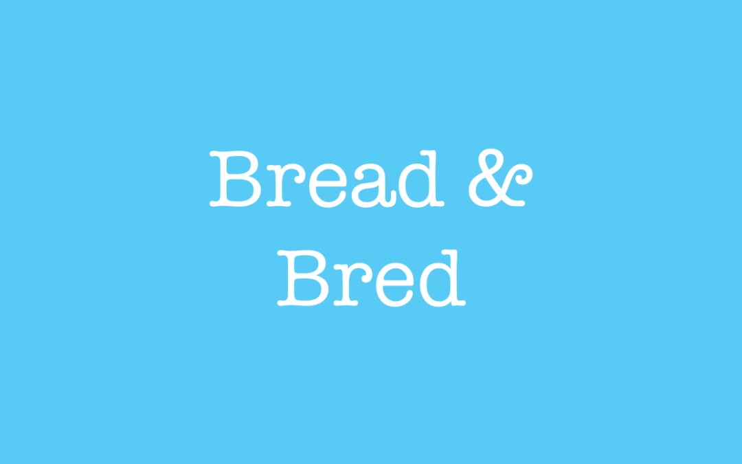 Bread and Bred