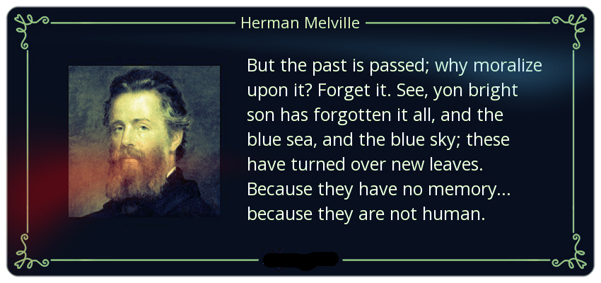 Herman Melville quote: But the past is passed; why moralize upon it?