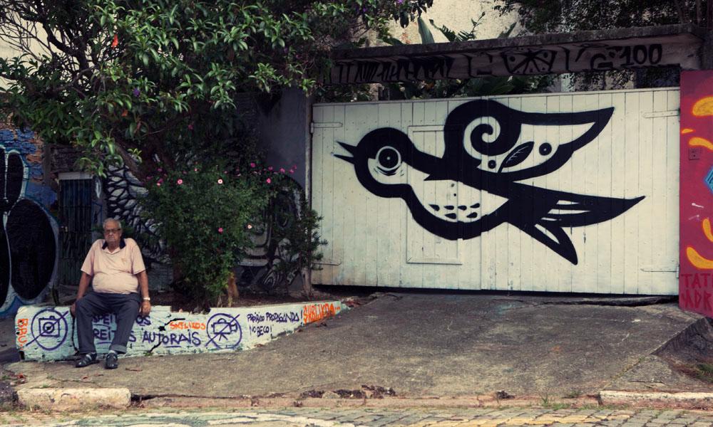 Bird graffiti Sao Paulo