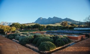 Special Stays: Babylonstoren, Cape Winelands, South Africa