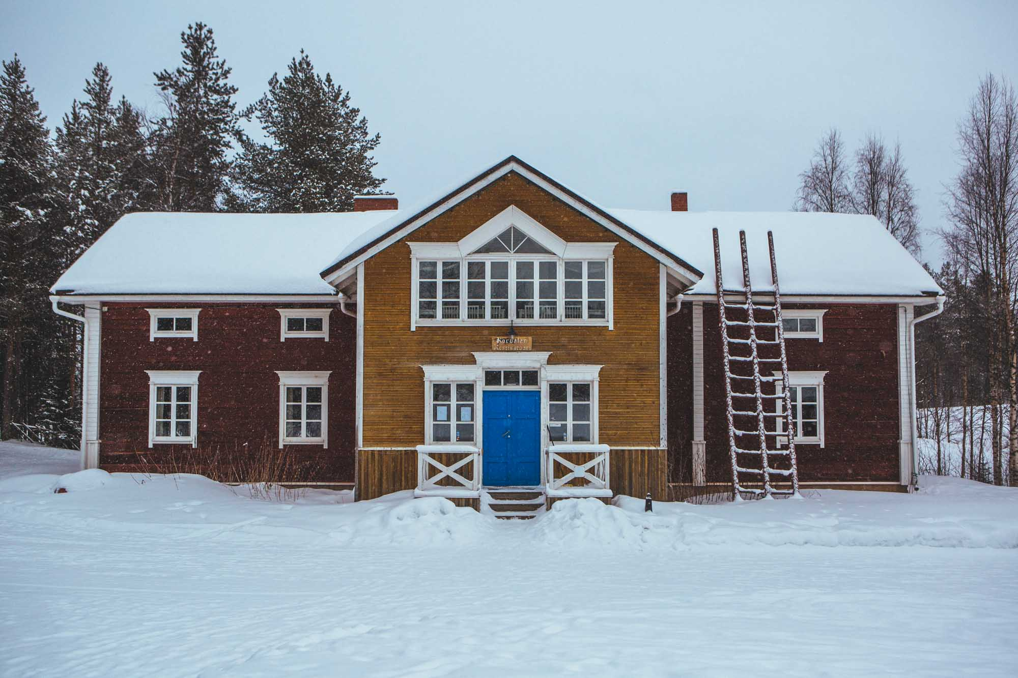 Huskies at Korvala - 5-day Finland itinerary Northern Lights
