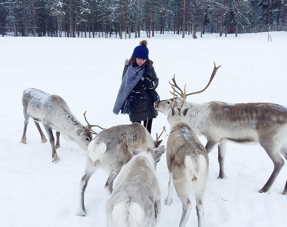 Lapland vacation tips - Jaakola reindeer farm
