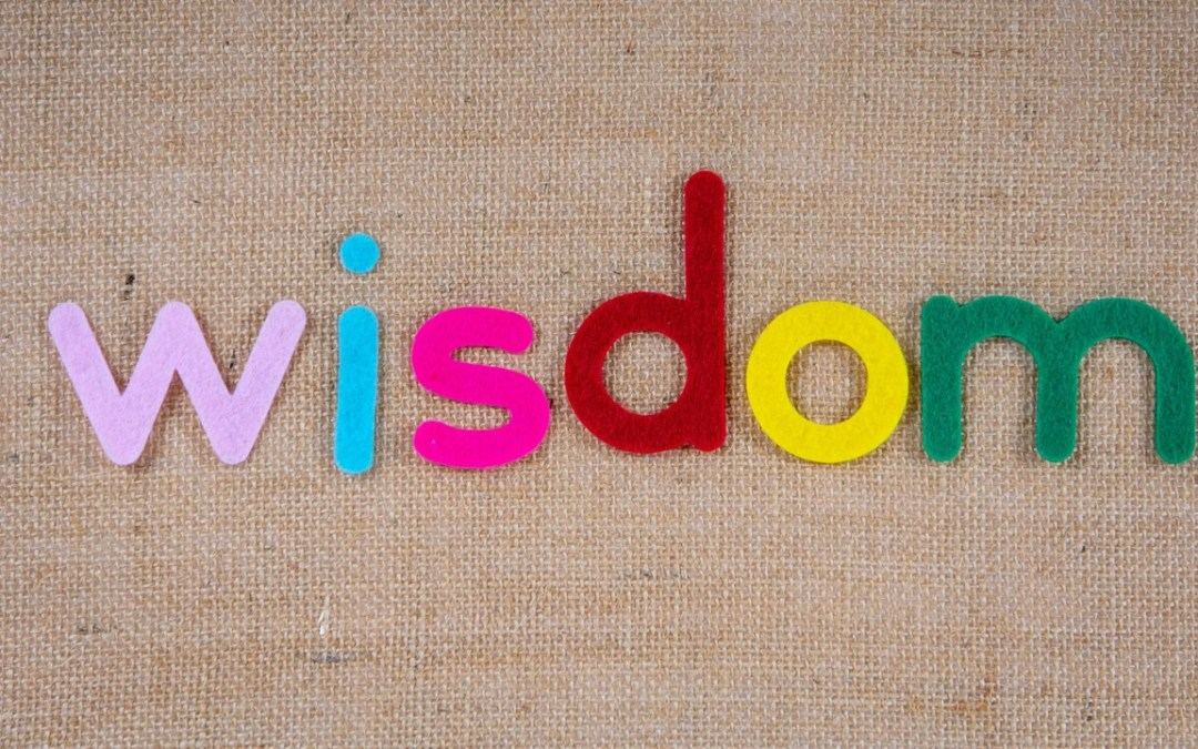 """What the World Needs is """"Big Wisdom"""""""
