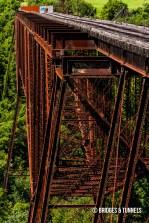 Young's High Bridge
