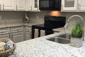 contemporary kitchen finishings