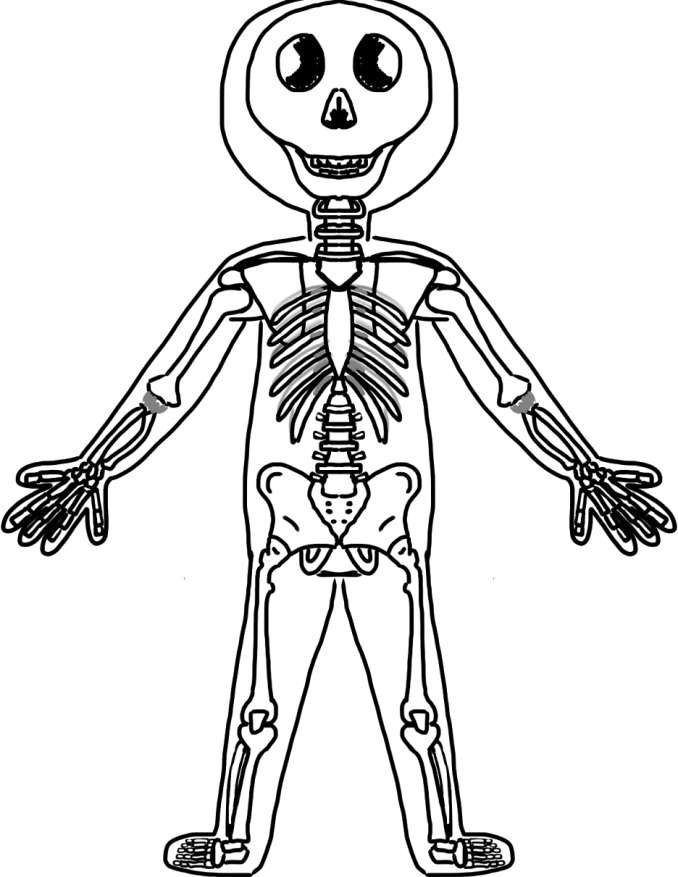 Special STEAM Event: Human Body (Blood and Bones