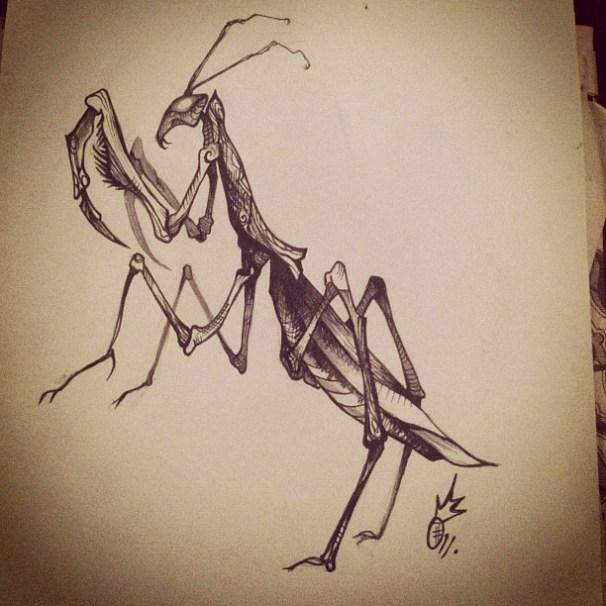 DTP Mantis