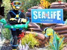 LEGOLAND® California Resort SEA LIFE™ Aquarium - Brie Brie ...