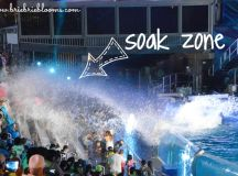 The truth about the SeaWorld soak zone - Brie Brie Blooms