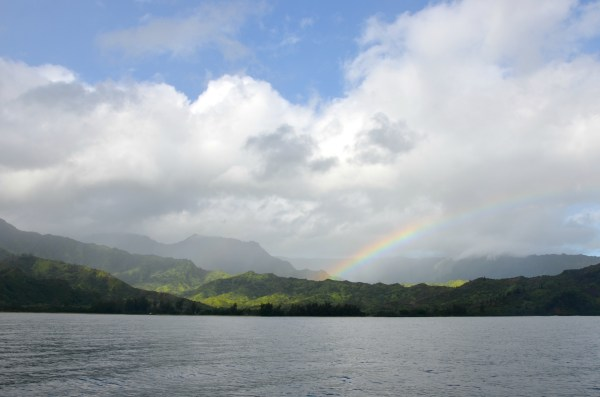Na Pali Coast Snorkel Tour Hanalei Bay Hawaii Family Travel - Brie Blooms