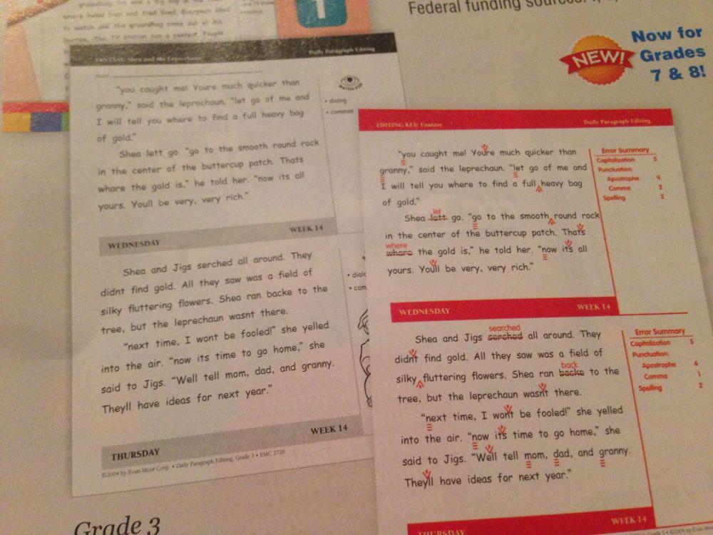 medium resolution of 3rd Grade Editing Printable Worksheets   Printable Worksheets and  Activities for Teachers