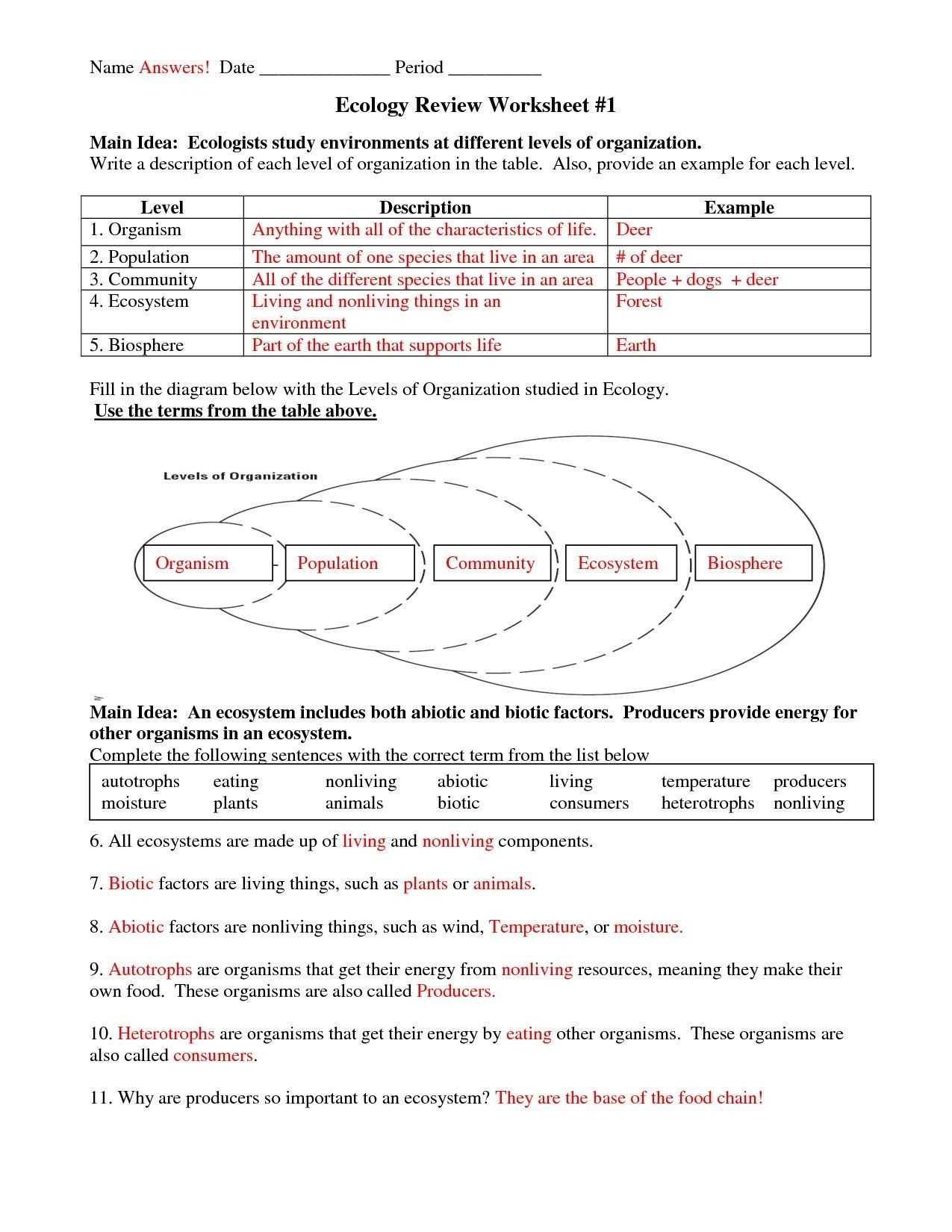 5th Grade Science Worksheet And Answers