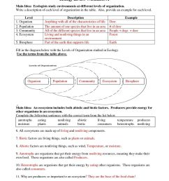 7th Grade Science Worksheets With Answers   Printable Worksheets and  Activities for Teachers [ 1650 x 1275 Pixel ]