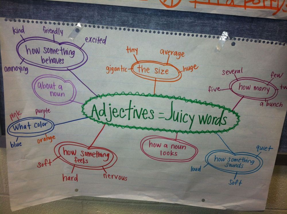 medium resolution of Coordinate Adjectives Worksheets   Printable Worksheets and Activities for  Teachers