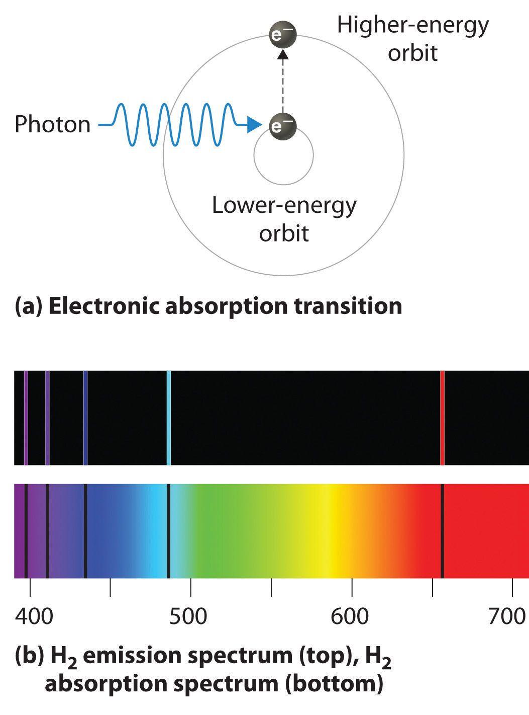Light Energy Worksheet Answers