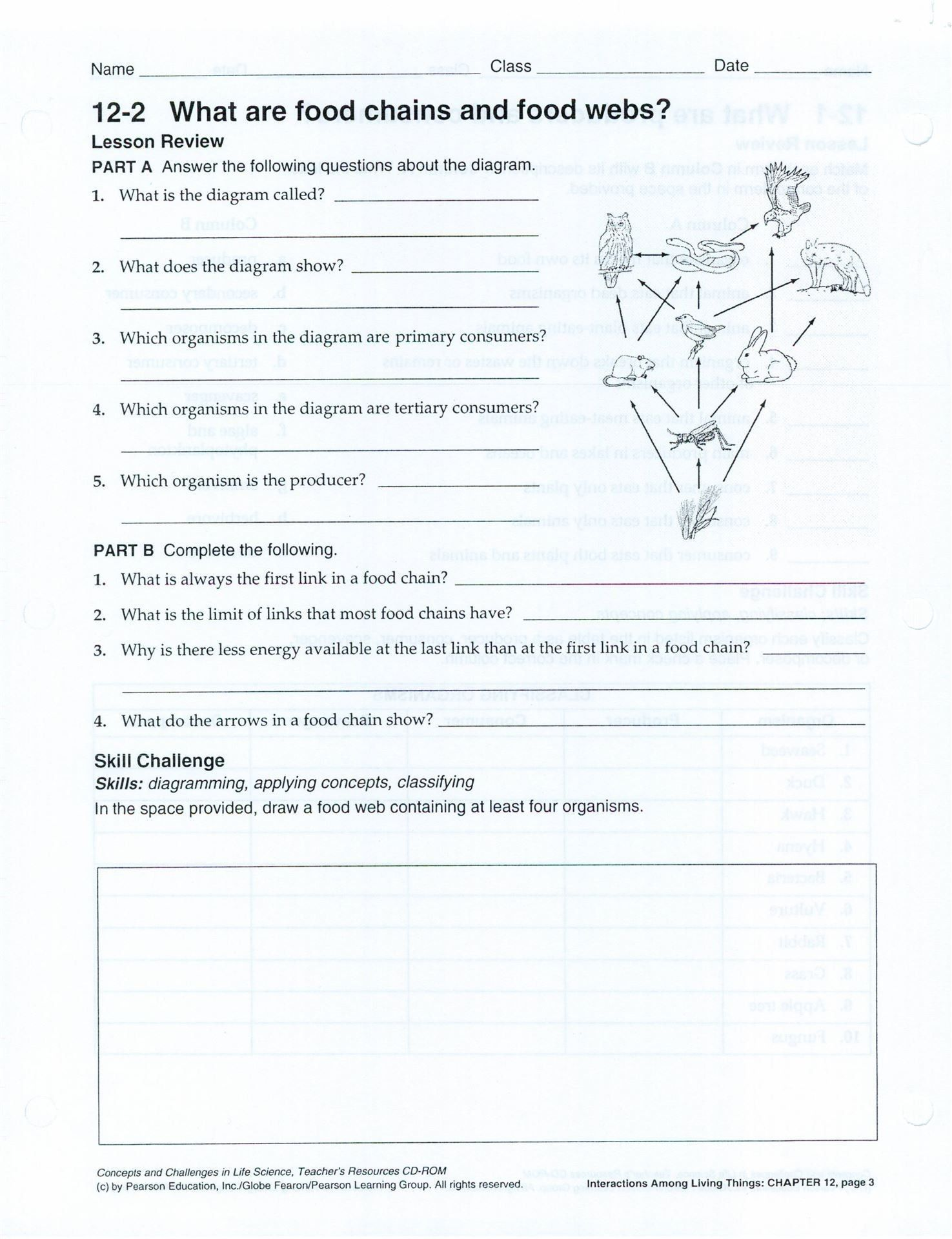 Bill Nye Plants Worksheet