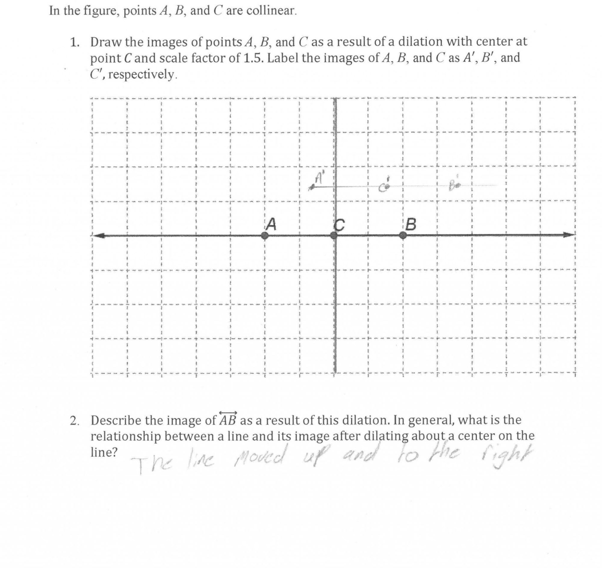 hight resolution of Dilation Worksheet Answers   Printable Worksheets and Activities for  Teachers