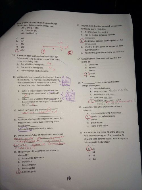 small resolution of Direct And Inverse Variation Worksheet Answer Key - Nidecmege