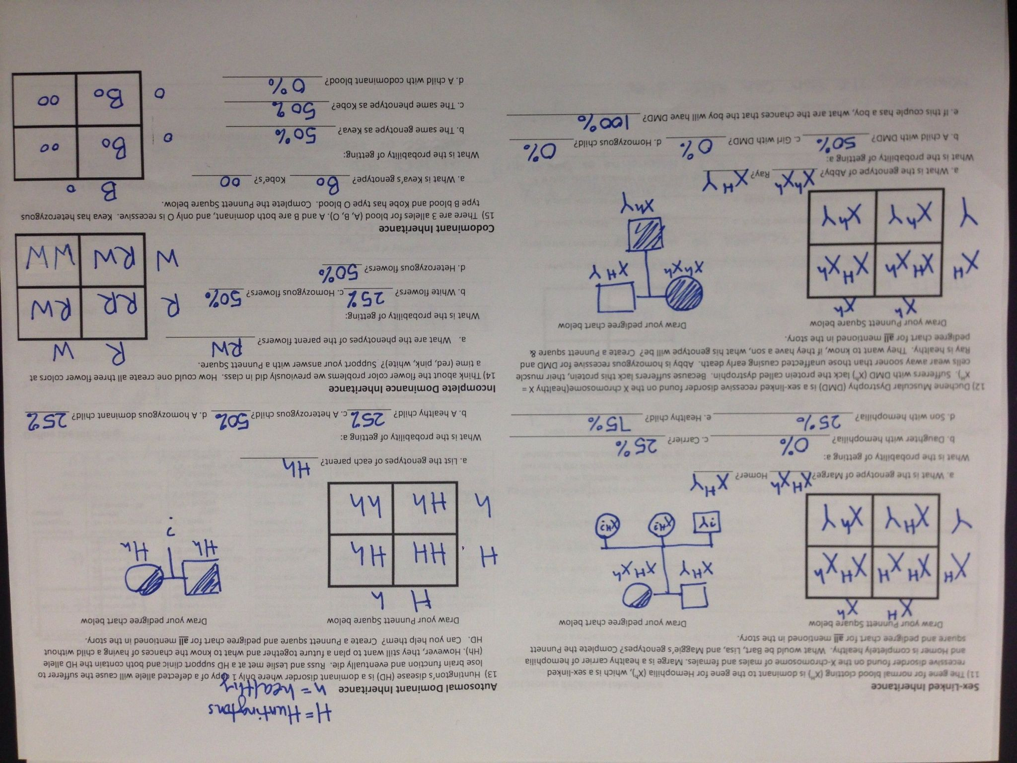 Dna And Forensics Worksheet Answers