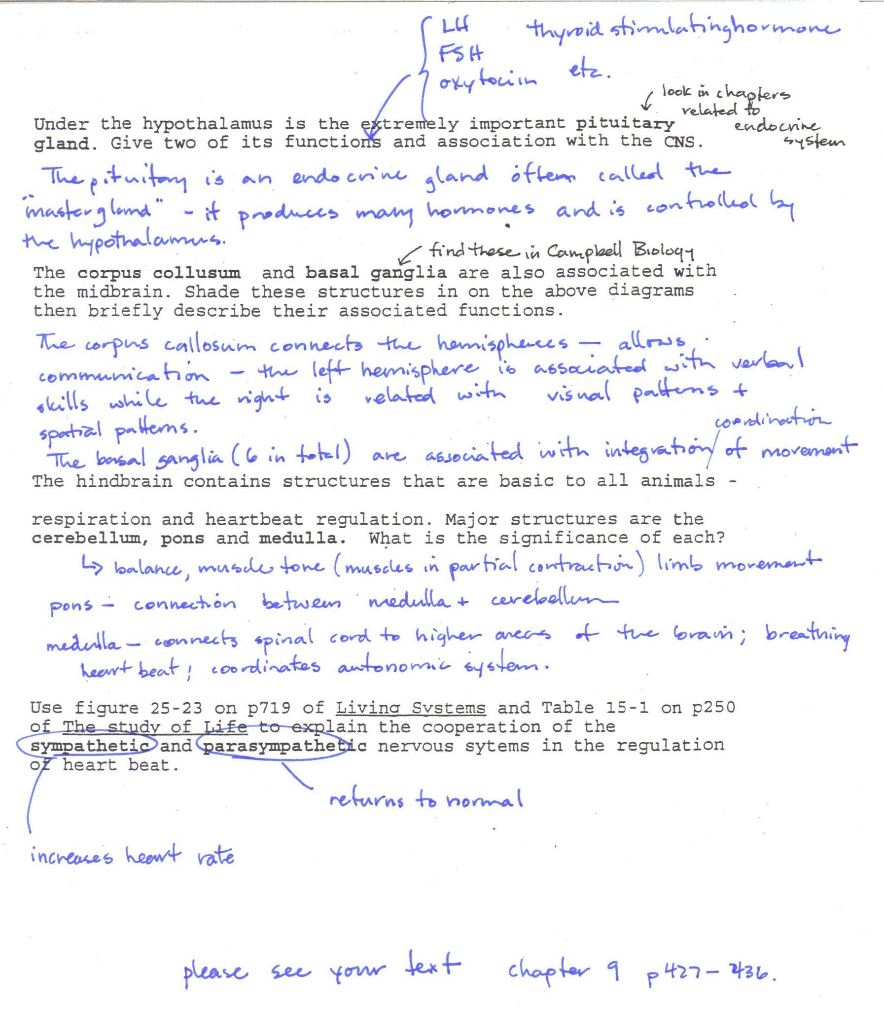 Dna Fingerprinting Worksheet