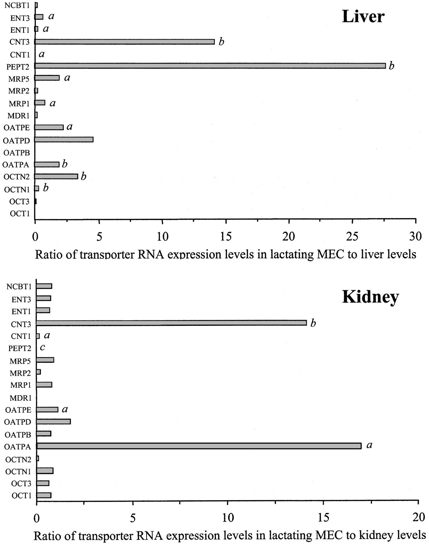 Dna Replication And Rna Transcription Worksheet Answers