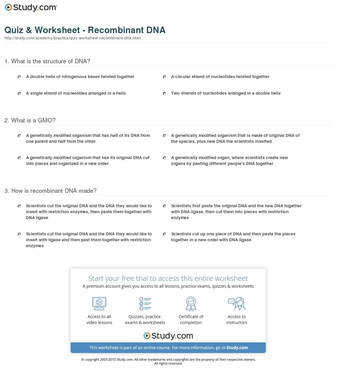 Dna Replication Coloring Worksheet Answer Key