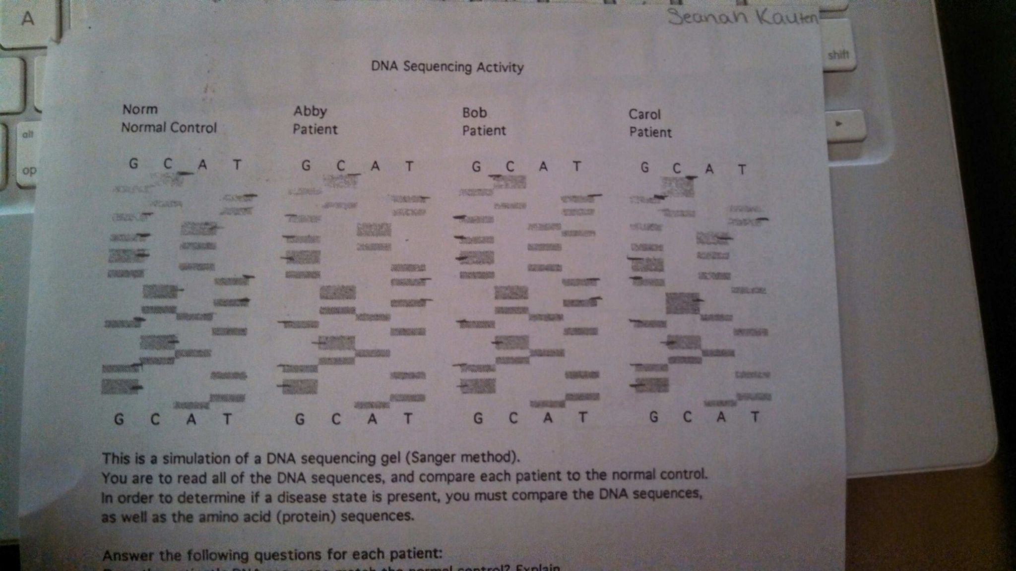Dna The Double Helix Coloring Worksheet