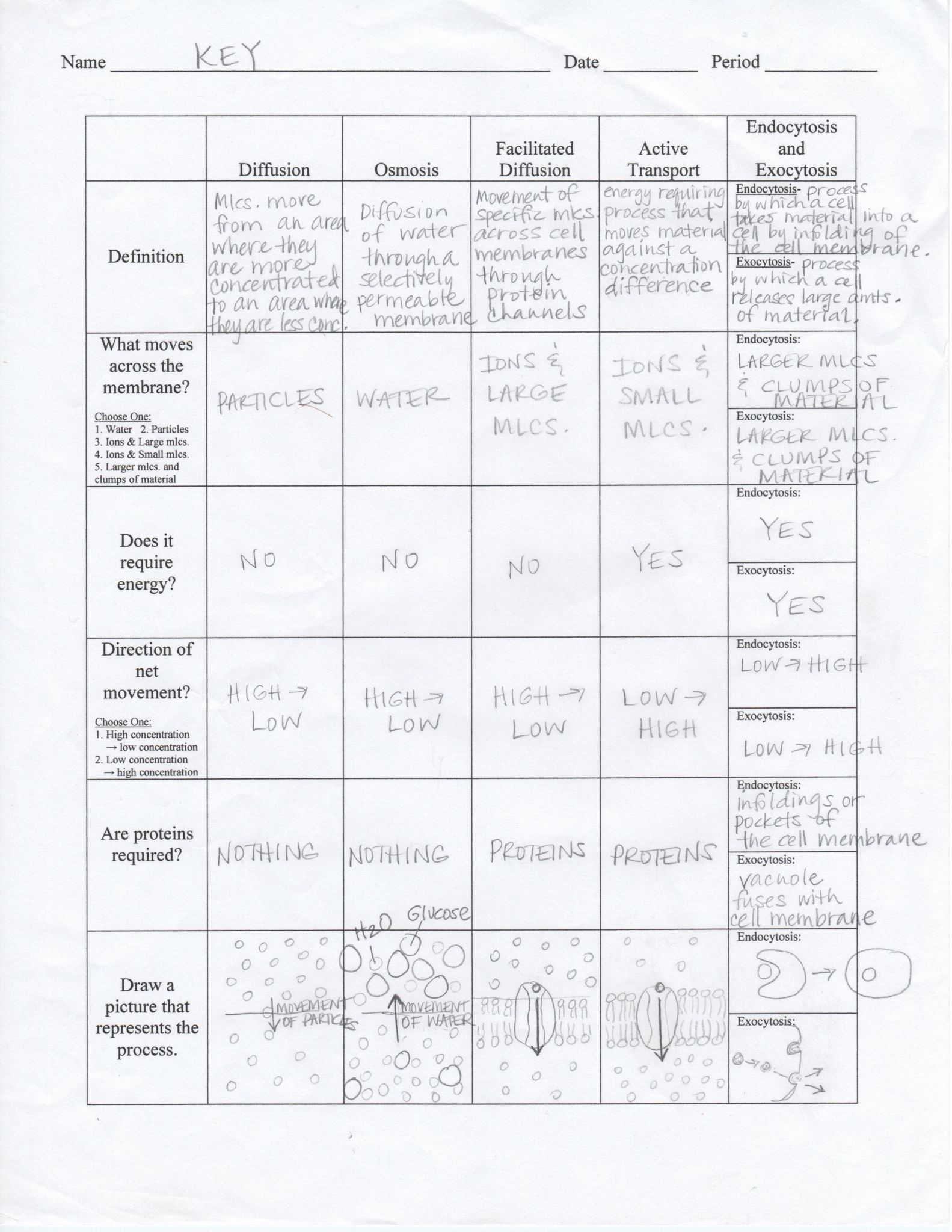 Environmental Science Worksheets And Resources Answers
