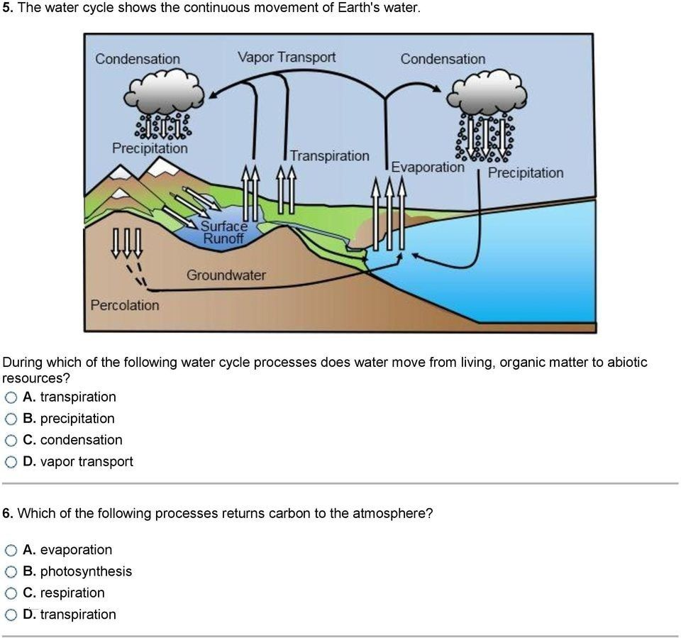 hight resolution of water cycle diagram simple schaferforcongressfo schaferforcongressfo