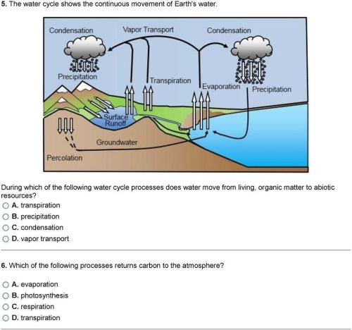 small resolution of water cycle diagram simple schaferforcongressfo schaferforcongressfo