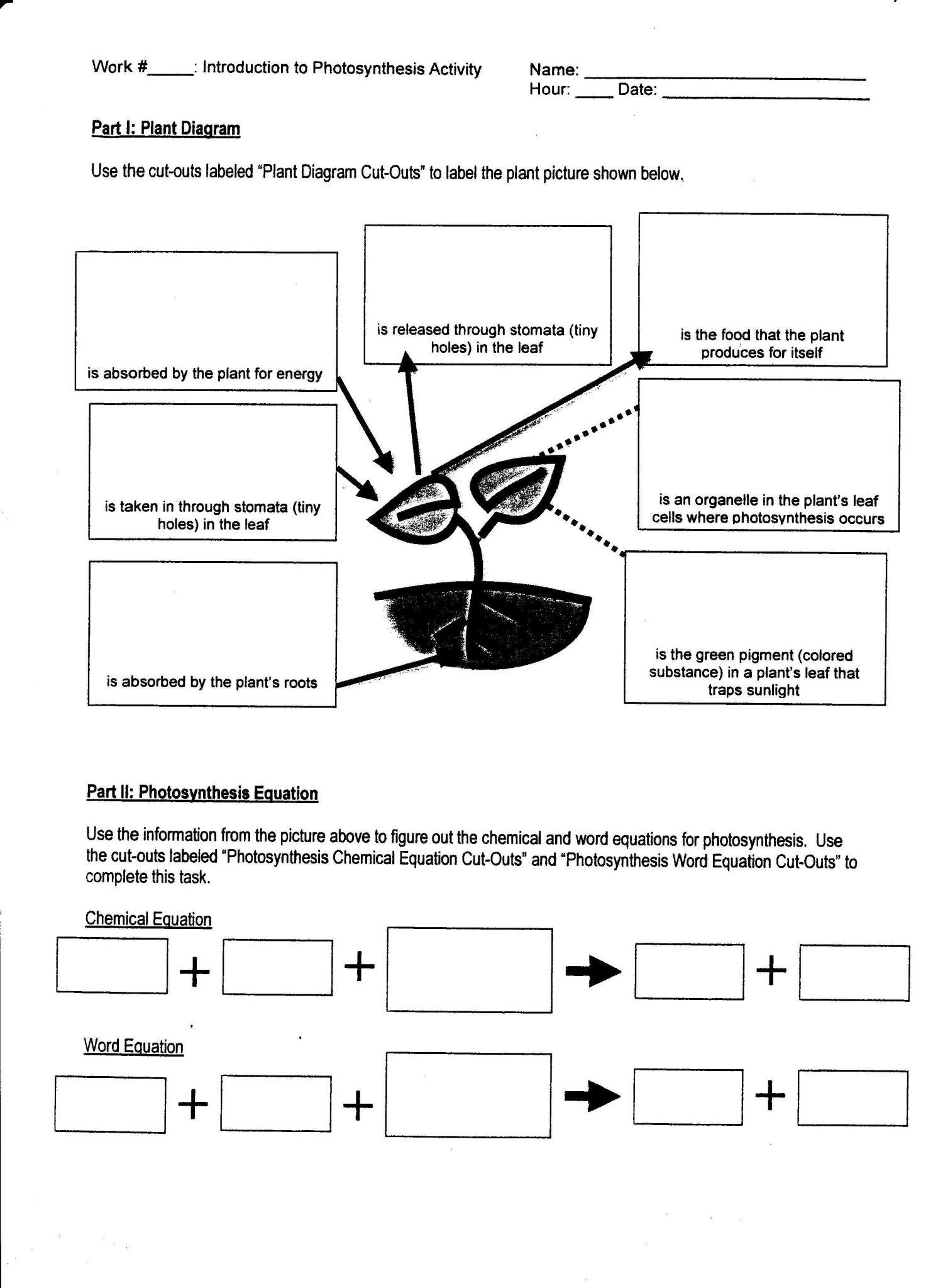 Metric Conversion Worksheet