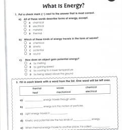 32 Kinetic And Potential Energy Worksheet Answers Key - Worksheet Resource  Plans [ 2048 x 1583 Pixel ]